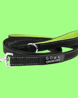 Dog leash by GOMA