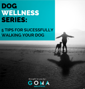 DOG WELLNESS SERIES: 5 TIPS FOR SUCCESSFULLY WALKING YOUR DOG